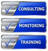 Virtual CIO consulting service